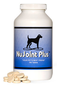 NuJoint Plus Wafers