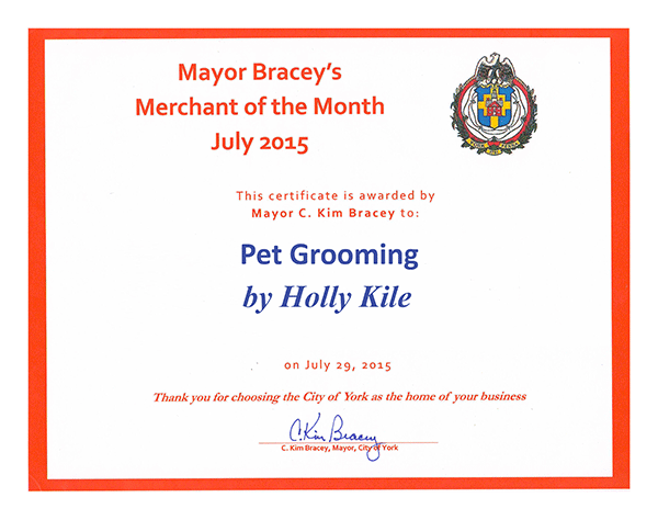 Merchant of the Month Award - July 2015